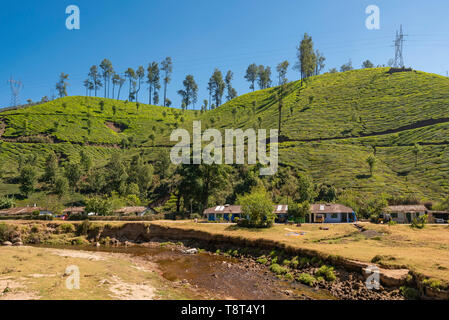 Horizontal view of a row of hillside cottages infront of a river in Munnar, India. - Stock Photo