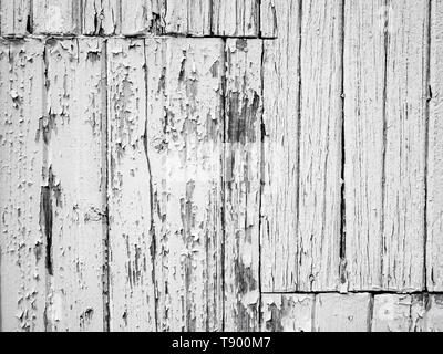 Authentic old worn white painted boards with flaking peeling paint grunge background texture - Stock Photo