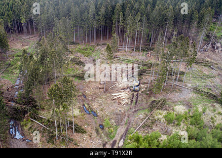 Sankt Ottilien, Germany. 16th May, 2019. A photograph of a forest area in the Söhrewald, which was severely affected by the windthrow and on which a harvester is in use (aerial photograph with a drone). After the drought of 2018, trees are weakened and susceptible to bark beetle infestation. Credit: Swen Pförtner/dpa/Alamy Live News - Stock Photo