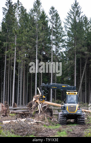 Sankt Ottilien, Germany. 16th May, 2019. A harvester (wood harvester) debarks a spruce trunk on a forest area in the Söhrewald that is severely affected by the windthrow. After the drought of 2018, trees are weakened and susceptible to bark beetle infestation. Credit: Swen Pförtner/dpa/Alamy Live News - Stock Photo