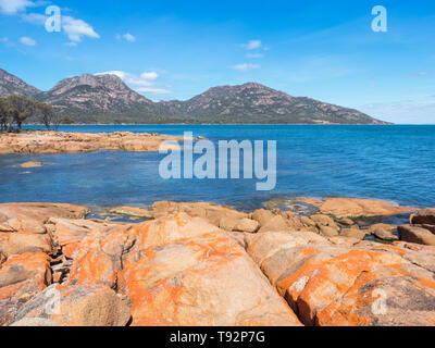Orange lichen on rocks at Coles Bay, adjacent to Freycinet National Park in Tasmania, Australia. - Stock Photo