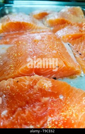 salmon fillet on a metal tray - Stock Photo