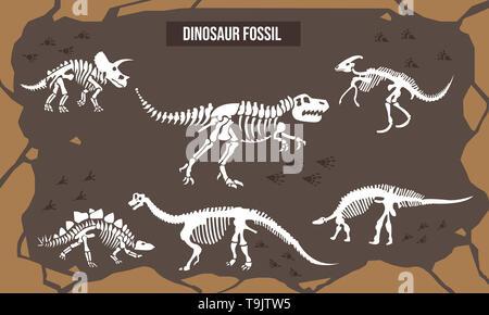 Vector Illustration of Dinosaur fossil - Stock Photo