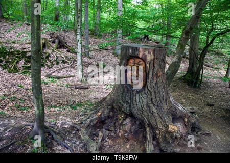 Carved face in a tree stump, Steckeschlääfer-Klamm, Binger forest, Bingen on the Rhine, Rhineland-Palatinate, Germany - Stock Photo