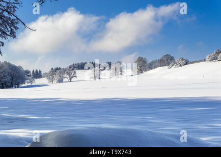 Nice winter scenery after fresh snowfall on the Ilkahöhe, Tutzing, Bavaria, Germany, Europe, Schöne Winterlandschaft nach Neuschnee auf der Ilkahöhe,  - Stock Photo