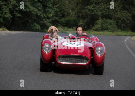 RELEASE DATE: August 9, 2019 TITLE: The Art of Racing in The Rain STUDIO: Twentieth Century Fox DIRECTOR: Simon Curtis PLOT: A dog named Enzo recalls the life lessons he has learned from his race car driving owner, Denny. STARRING: MILO VENTIMIGLIA as Denny Swift, Enzo. (Credit Image: © Twentieth Century Fox/Entertainment Pictures) - Stock Photo