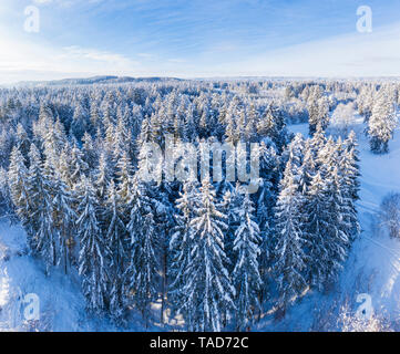 Germany, Bavaria, aerial view over snowy spruce forest near Geretsried - Stock Photo