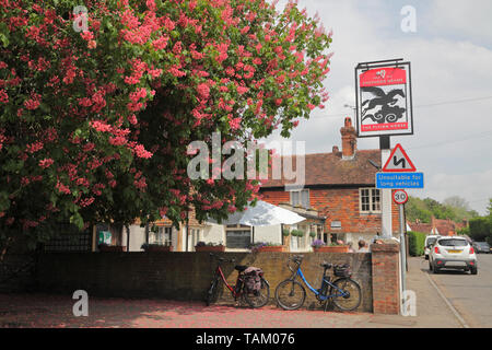 The Flying Horse pub at Smarden, Kent, beside a flowering red Horse Chestnut Tree, Aescalus Carnea, England, UK - Stock Photo