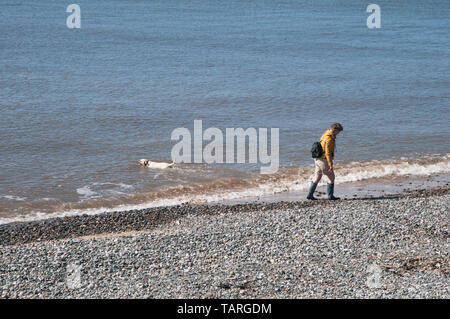 Girl with backpack on shingle beach walking along shoreline whilst dog swims in the sea at Cleveleys Lancashire England UK - Stock Photo