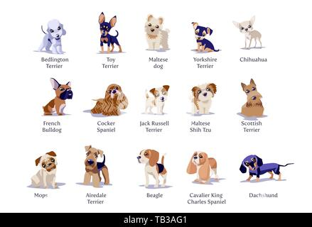 Vector illustration of dogs puppies different breeds isolated - Stock Photo