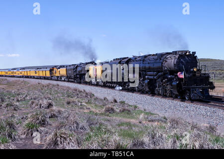 Union Pacific steam locomotives 4014, Big Boy, and 844 double-head towards Evanston, Wyoming, on their return trip to the Union Pacific Steam Shop in  - Stock Photo