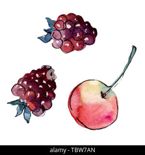 Fresh apple and raspberry healthy food in a watercolor style isolated element. Hand drawning fashion aquarelle. Background illustration set. Watercolo - Stock Photo