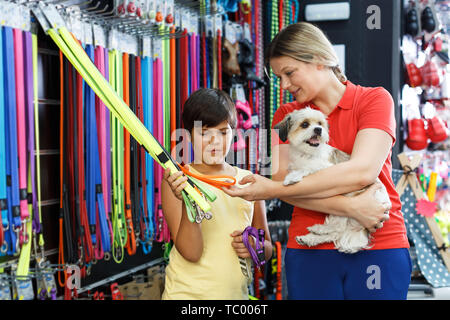 Preteen boy with mother choosing accessories for their havanese puppy in pet shop - Stock Photo