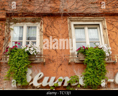 House façade with flowers ingrown and the German word 'flowers' on the facade - Stock Photo