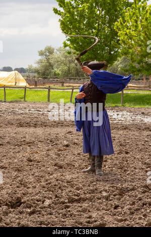 Kalocsa, Puszta, Hungary - May 23, 2019 : Traditional Csikos Hungarian cowboy displaying skills with bullwhip in corral. - Stock Photo