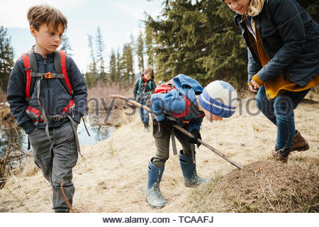 Curious mother and sons hiking in woods - Stock Photo