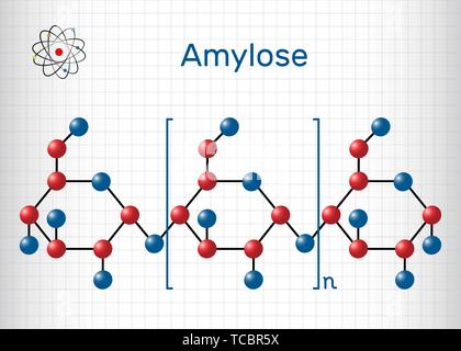 Amylose molecule. It is a polysaccharide and one of the two components of starch. Structural chemical formula and molecule model. Sheet of paper in a  - Stock Photo