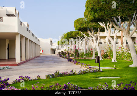 Hotel with well-groomed territory. Beautiful lawn with green grass and beautiful flowers of landscape design at five star hotel territori. Summer in S - Stock Photo