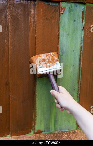 Painting old wooden fence with a brown paint - Stock Photo