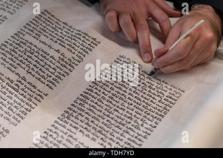 Dresden, Germany. 16th June, 2019. Elad Cohen, scribe of the new Tora role for Dresden, writes the last letters of the unpunctuated Hebrew text before the ceremonial inauguration of the role in the city hall. Credit: Robert Michael/dpa-Zentralbild/dpa/Alamy Live News - Stock Photo