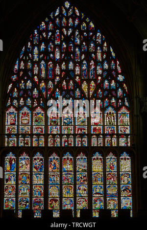 Great East window, the largest medieval stained glass window in Britain, at York minster cathedral, England, illustrating the history of the world fro - Stock Photo