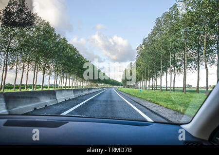 View through the windscreen of a car on a tree-lined road on the flat landscape on the island of Voorne-Putten, The Netherlands - Stock Photo