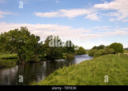 River Ure, Wensleydale, near Askrigg - Stock Photo