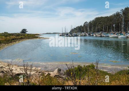 Marina Harbor, Morro Bay State Park, Los Osos, California Coastline - Stock Photo