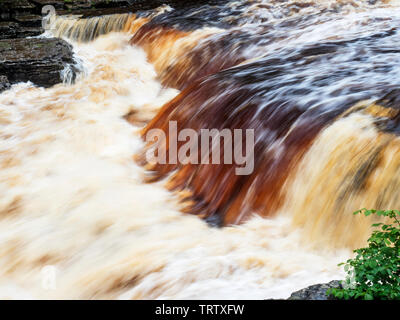 Peaty water in the River Ure at Lower Aysgarth Falls Wensleydale Yorkshire Dales North Yorkshire England - Stock Photo