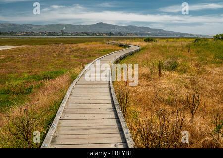 The Marina Peninsula Trail at Morro Bay State Park Goes Through the Estuary and an Elfin Forest near the Harbor, California Coastline, Los Osos - Stock Photo