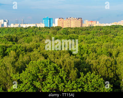 aerial view of large city park and residential houses on horizon in sunny summer evening - Stock Photo