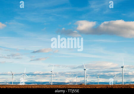 Wind turbines against blue sky on sunny day - Stock Photo