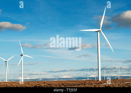 Wind turbines on field against sky on sunny day - Stock Photo