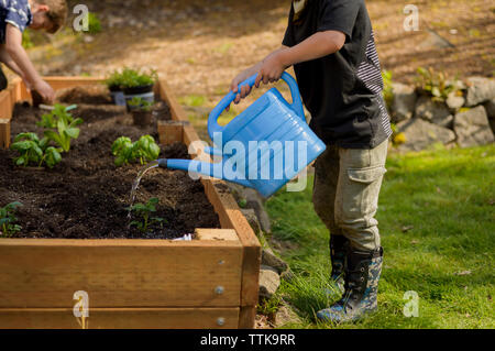 Boy watering plants while brother planting in raised-bed gardening at backyard - Stock Photo
