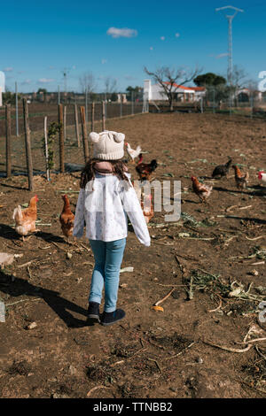 Girl run behind some chickens on a farm - Stock Photo