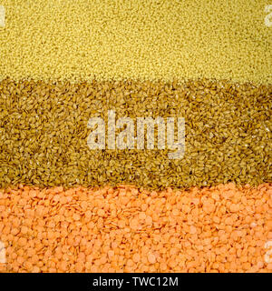 Mixed Selection of Healthy Natural Flax Seed Couscous and Red Lentils - Stock Photo