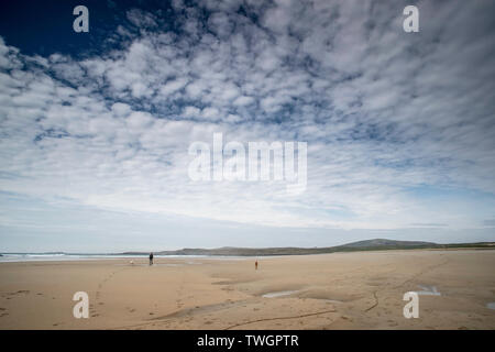 Lone dog-walker and dog on an empty beach in the sun - Stock Photo