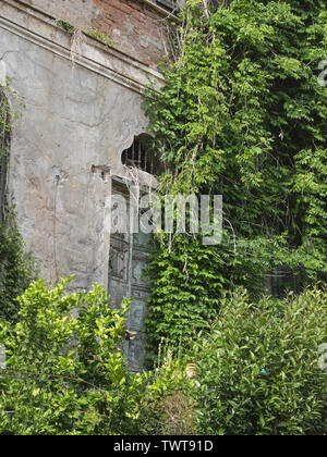 part of facade of an old abandoned villa: wooden door surrounded by plants and vegetation - Stock Photo