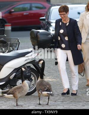 24 June 2019, North Rhine-Westphalia, Duesseldorf: CDU chairman Annegret Kramp-Karrrenbauer passes geese on her way to the Ständehausreff of the 'Rheinische Post'. Photo: Henning Kaiser/dpa - Stock Photo