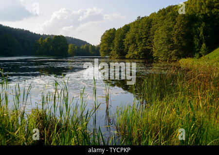 Lake near Rutka, Suwalki landscape park, Podlasie, Poland - Stock Photo