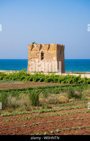 Baroque watchtower, beautiful old tower in San Vito, Polignano a Mare, Bari, Puglia, Italy with with blue sea, beach and agriculture cultivated field, - Stock Photo