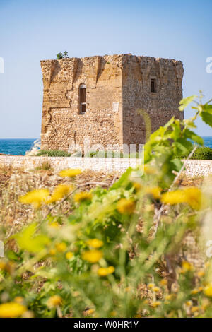 Baroque watchtower, beautiful old tower in San Vito, Polignano a Mare, Bari, Puglia, Italy with with blue sea, stone wall and flowers, Mediterranean - Stock Photo