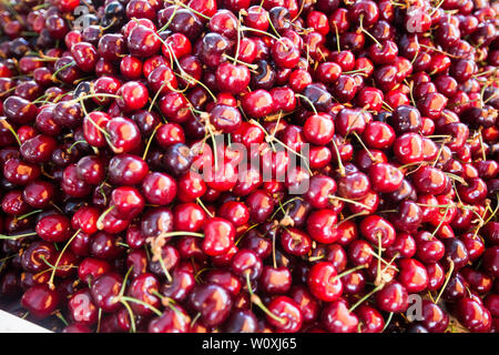 Top view of ripe red cherry fruit on farmers market. - Stock Photo