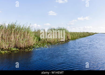 Miami Florida I-75 Interstate 75 Alligator Alley The Everglades canal grass saw grass marshes wetland ecosystem environment drai - Stock Photo