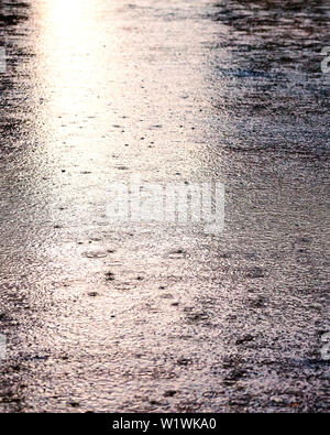 Rain drops on the surface of water in a puddle. Rainy day. - Stock Photo