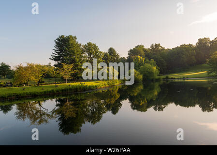 An early morning landscape photo that includes a large reflecting pond in a botanical garden. - Stock Photo