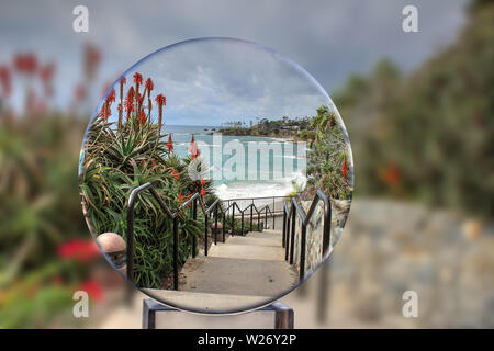 Red hot poker flowers bloom on plants leading down the stairs to the ocean through a crystal ball at Heisler Park in Laguna Beach, California. - Stock Photo