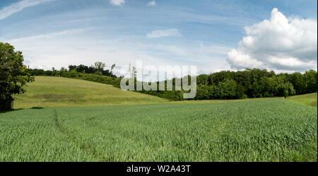 Landscape along the long-distance hiking trail Neckarsteig in Germany - Stock Photo