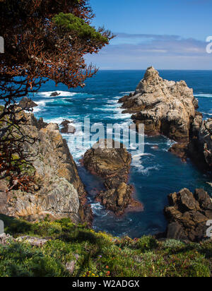 Rocky promontory extends into blue sea with Cypress trees and spring flowers on California coast. - Stock Photo