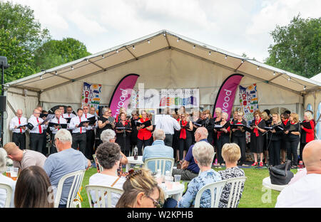 Crowd of seated people watching a choir perform at the main marquee at Stockton Heath Festival 2019 - Stock Photo
